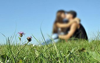 Уединение влюбленных на природе
